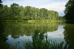 Lac du bois des Forts à Coudekerque village dans le Nord