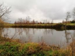 étang des traminots à Deulémont dans le Nord