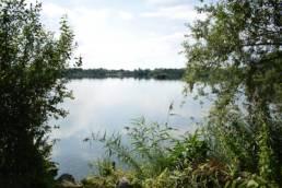 Etang d'Amaury à Hergnies dans le Nord