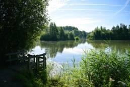 Etang de la puchoie à Saint Amand les eaux dans le Nord