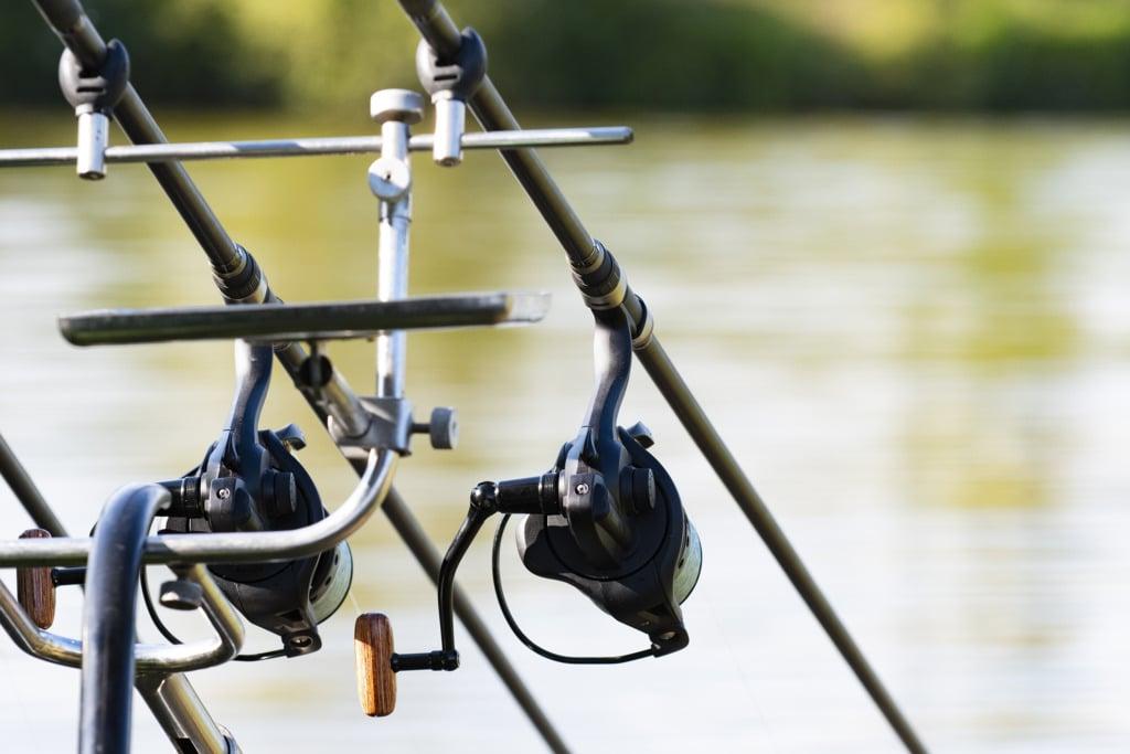 canne à pêche à la carpe