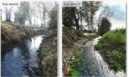 Avant et après travaux de restauration du Saint Georges à Salesches
